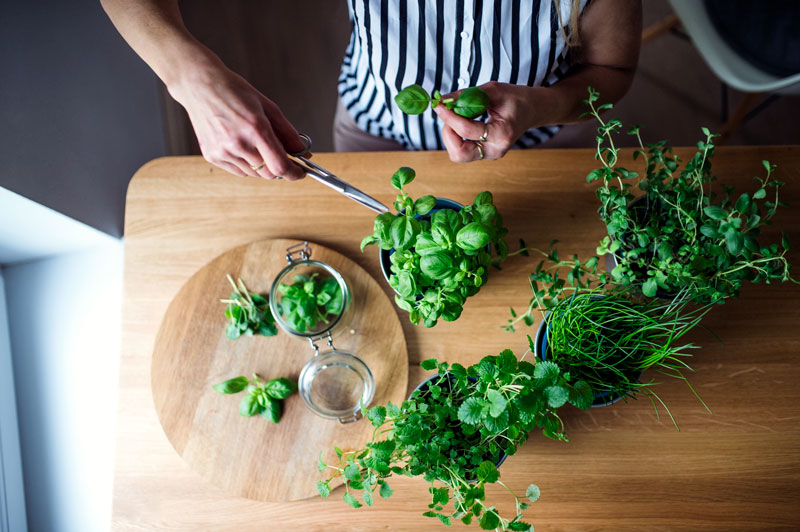 herbes-aromatiques WE ARE CLEAN CLEAN EATING
